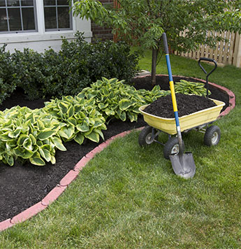 Landscaping in the Yard in Pittsburgh, PA